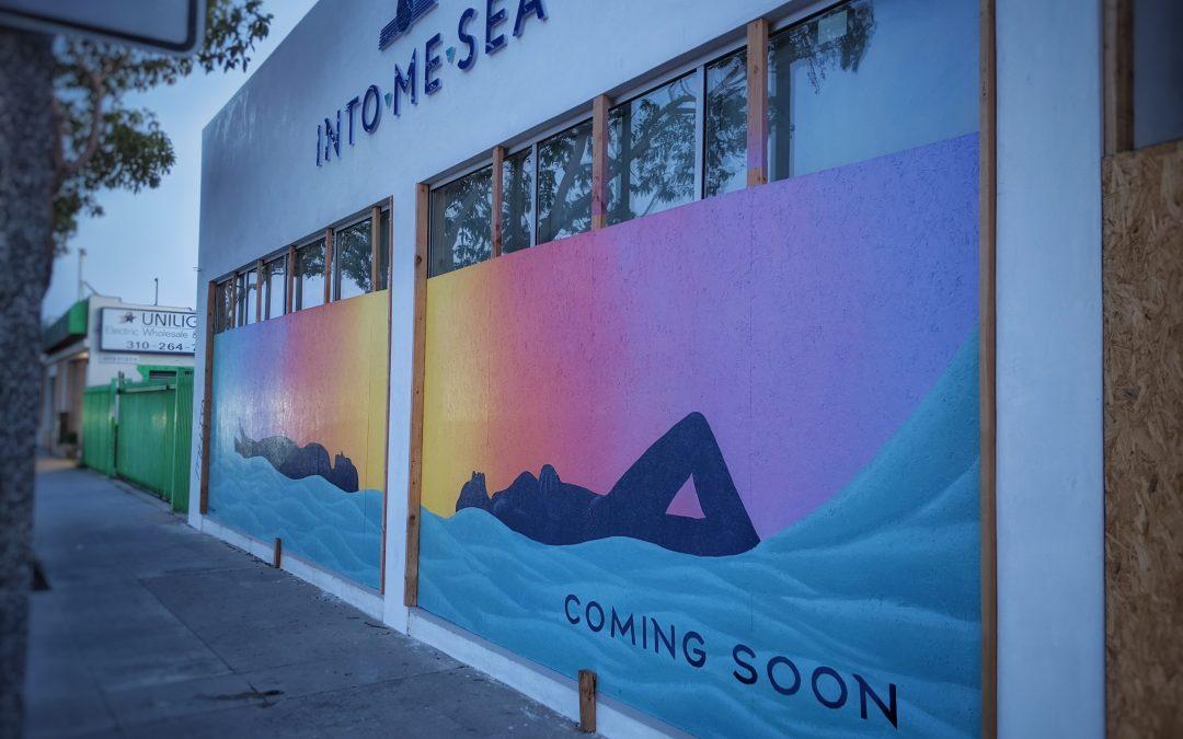 Pre-Opening Facade: IntoMeSea